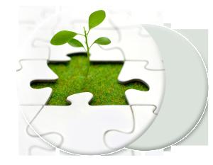 plant_growth